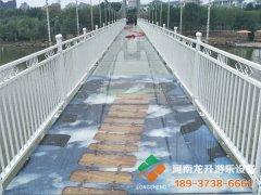 山东省单县人民公园玻璃吊桥项目